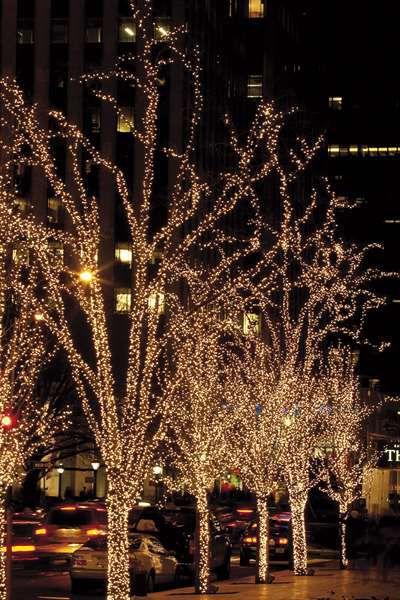 Showtec LED Rubber Twinkle Light WW 100 LEDS/10M/L
