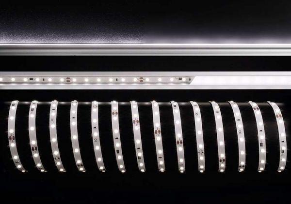 KapegoLED LED Stripe CW 5m 24V IP20 300 LEDs